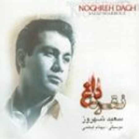 دانلود آلبوم نقره داغ از سعید شهروز