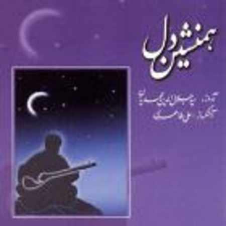 دانلود آلبوم همنشین دل از سید جلال الدین محمدیان