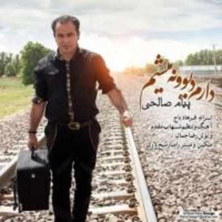 دانلود آلبوم تک اهنگ ها از پیام صالحی