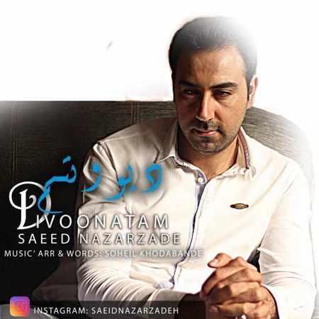 دانلود اهنگ سعید نظرزاده دیوونتم
