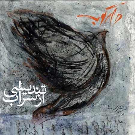 دانلود آلبوم تک اهنگ ها از گروه دارکوب