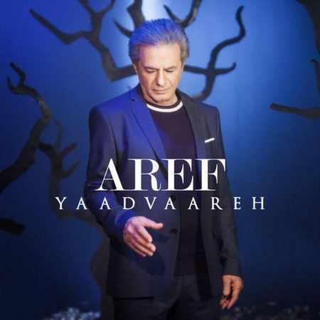 دانلود آلبوم تک اهنگ ها از عارف